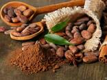 Cocoa Powder Natural 10-12% ™Favorich, Malaysia, photo 3