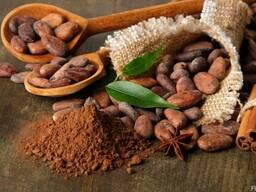 Cocoa Powder Natural 10-12% ™Favorich, Malaysia - photo 3