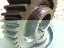 Gearwheel, gear, staft gear, toothed crown, gear box - photo 2