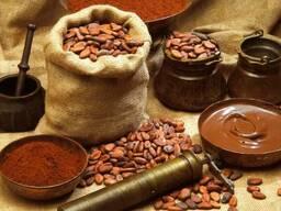 Какао порошок 10-12% Германия