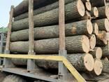Закупаем доску и пиломатериалы ясеня , дуба , липы . Круглый лес, пиловочник. - photo 1