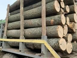 Закупаем доску и пиломатериалы ясеня , дуба , липы . Круглый лес, пиловочник.